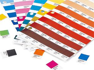 色彩検定のための対策講座開講
