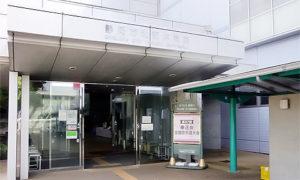 空手の全国大会取材に静岡に行きました。