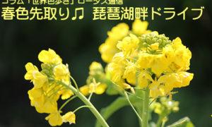 春色先取り♫ 琵琶湖畔ドライブ