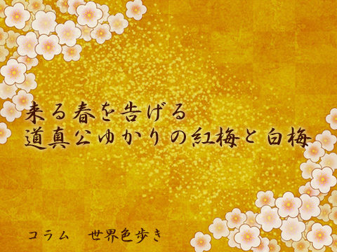 来る春を告げる道真公ゆかりの紅梅と白梅