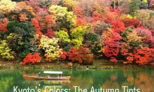 英語版 色のコラム「世界色歩き」始動です。